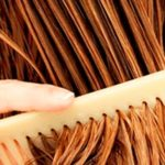 Vorteile von Aloe Vera für das Haar